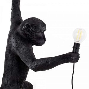 zbliżenie na małpę seletti czarną